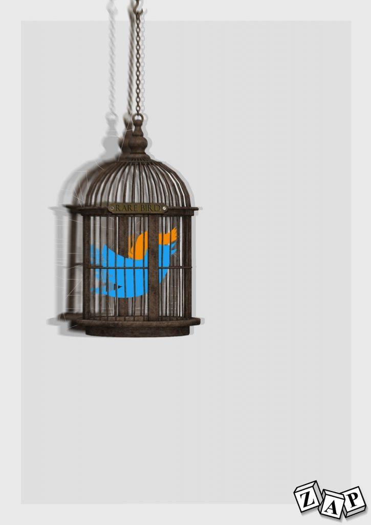dessin presse humour Donald Trump image drôle Twitter oiseau rare