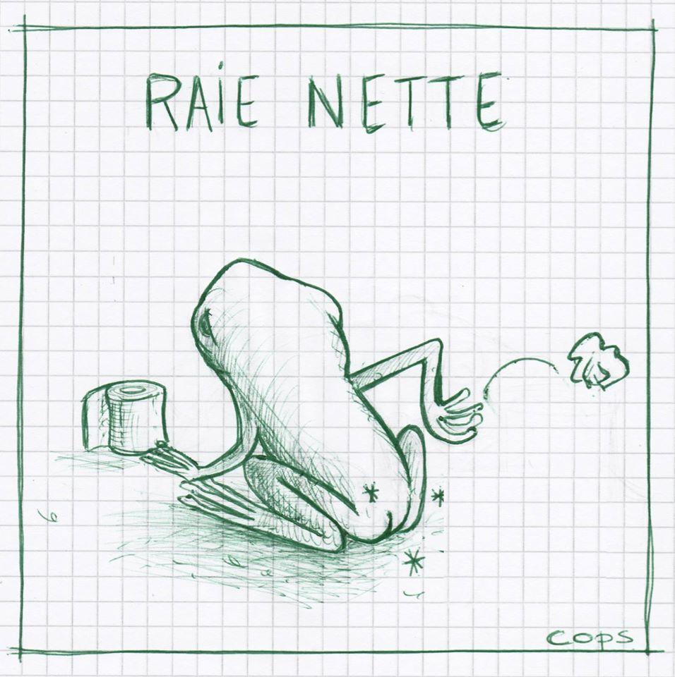 gag image drôle rainette dessin blague humour raie nette