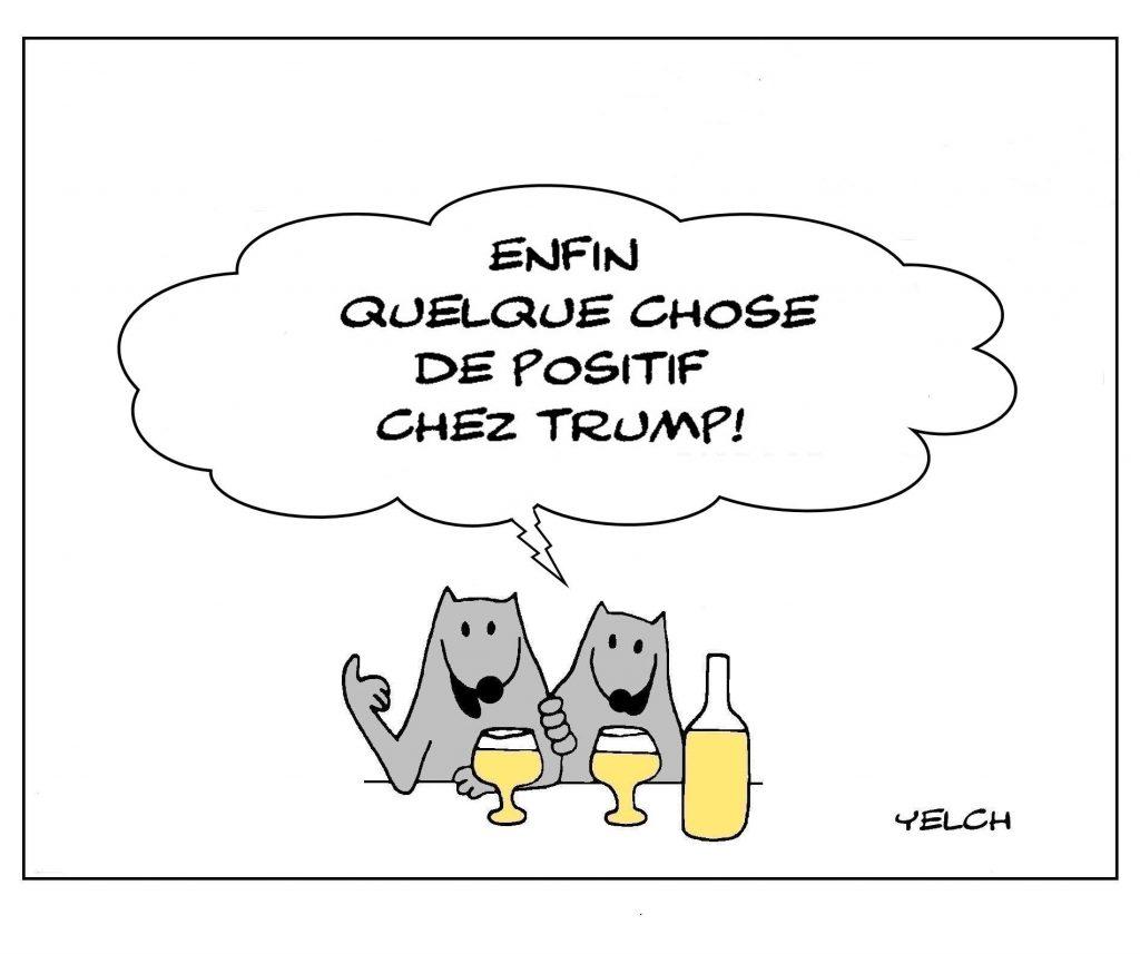 dessin humour Donald Trump image drôle coronavirus covid19