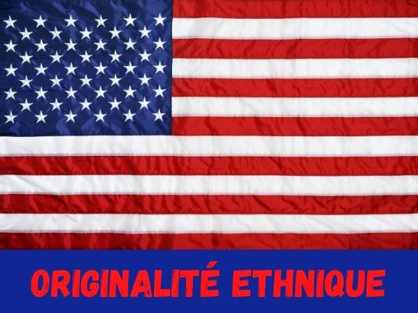 humour, blague sur les américains, blague sur les anglais, blague sur le métissage, blague sur les sangs mêlés, blague sur le brassage des populations, blague sur la diversité