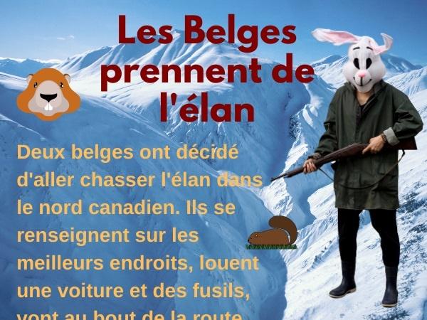 humour, blague sur les Belges, blague sur le Canada, blague sur la chasse à l'élan, blague sur les dépouilles, blague sur les astuces, blague sur l'éloignement
