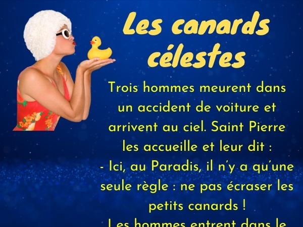 humour, blague Paradis, blague canards, blague règles, blague mocheté, blague Saint Pierre, blague punition