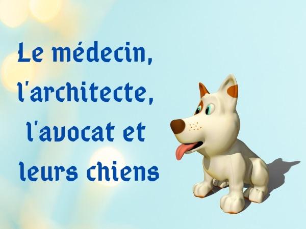 humour, blague sur les métiers, blague sur les avocats, blague sur les médecins, blague sur les architectes, blague sur les chiens, blague sur les comparaisons