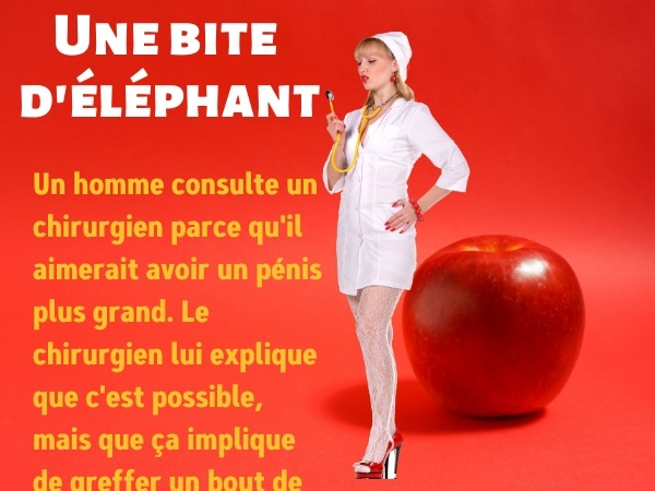 humour, blague sur la chirurgie du pénis, blague sur éléphanteaux, blague sur les bites, blague sur les pénis, blague sur la sodomie, blague sur la greffe de sexe, dessin de sexe d'éléphant