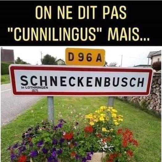 dessin humour cunnilingus image drôle Schneckenbusch