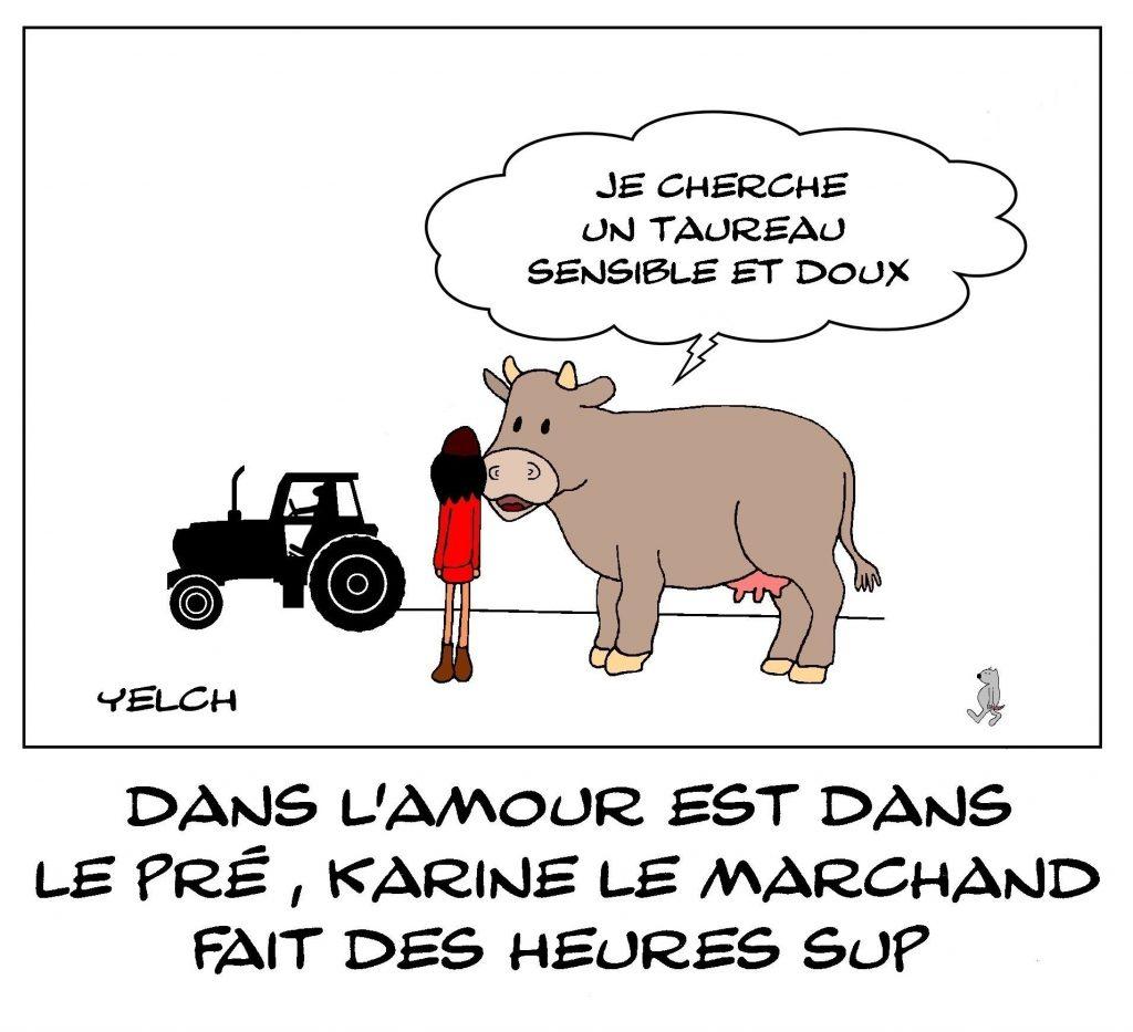 dessins humour Karine Le Marchand image drôle L'amour est dans le pré