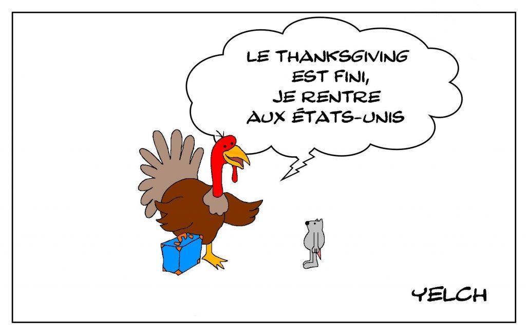 dessins humour dindes image drôle États-Unis Thanksgiving