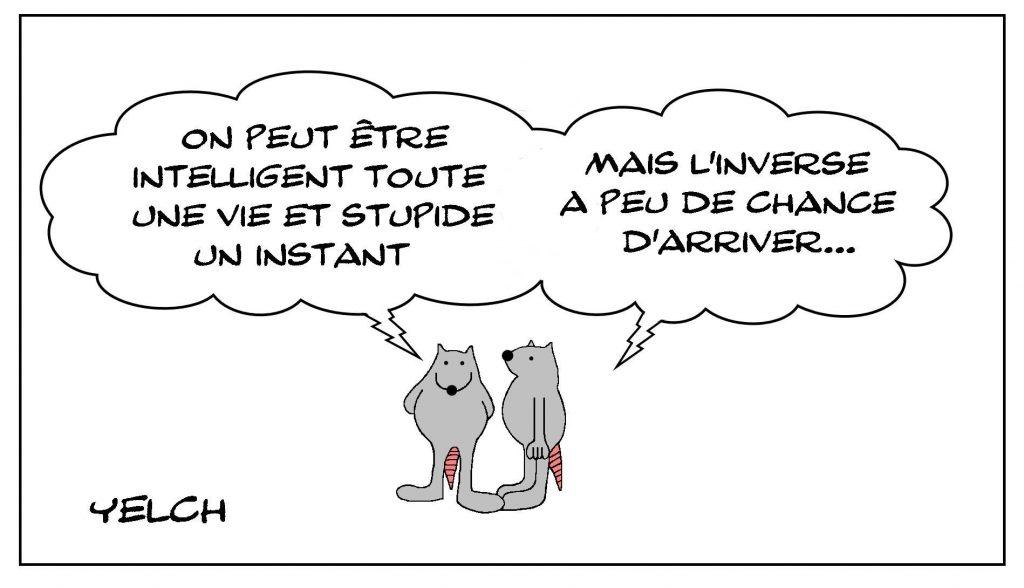 image drôle philosophie dessin humour intelligence stupidité