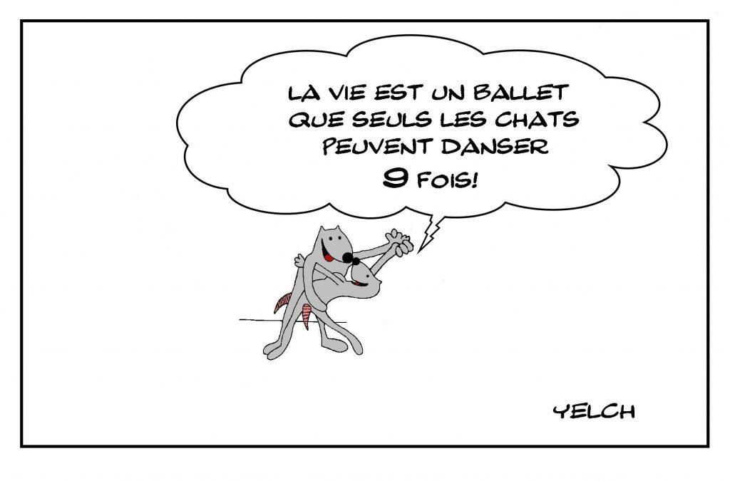 dessins humour chats vie image drôle ballets danse