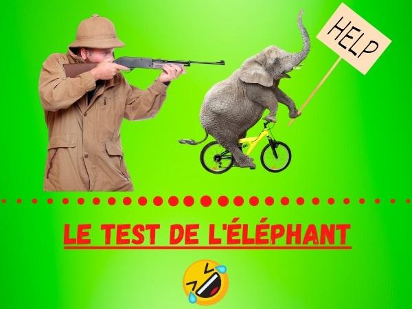 humour, blague recrutement, blague embauche, blague test, blague éléphant, blague chasse à l'éléphant, blague Afrique, blague candidat, blague métier, blague méthode, blague comportement, blague compétences