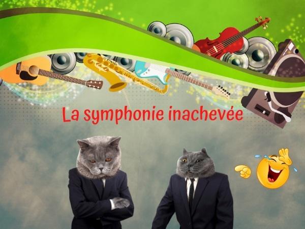 humour, blague symphonie, blague inachèvement, blague Symphonie Inachevée, blague Franz Schubert, blague Schubert, blague musique, blague orchestre, blague entreprise, blague rationalisation, blague optimisation, blague ressources humaines, blague compositeur, blague productivité