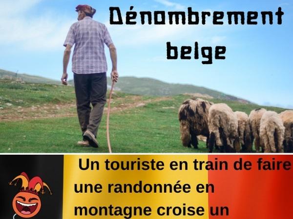 humour, blague sur les Belges, blague sur les moutons, blague sur les bergers, blague sur les paris, blague sur les touristes, blague sur le quitte ou double