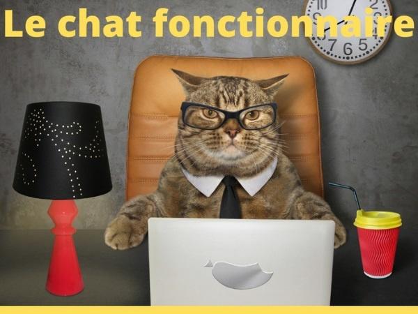 humour, blague sur les chats, blague sur les fonctionnaires, blague sur la titularisation, blague sur la dératisation, blague sur les souris, blague sur l'administration