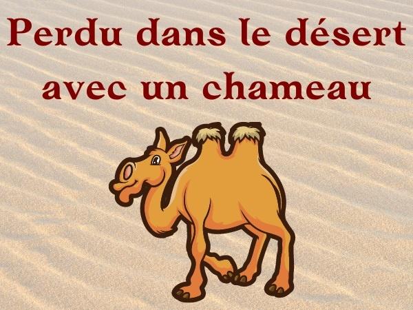humour, blague sur les déserts, blague sur les chameaux, blague sur les zoophiles, blague sur la séduction, blague sur les réparations, blague sur la sensualité