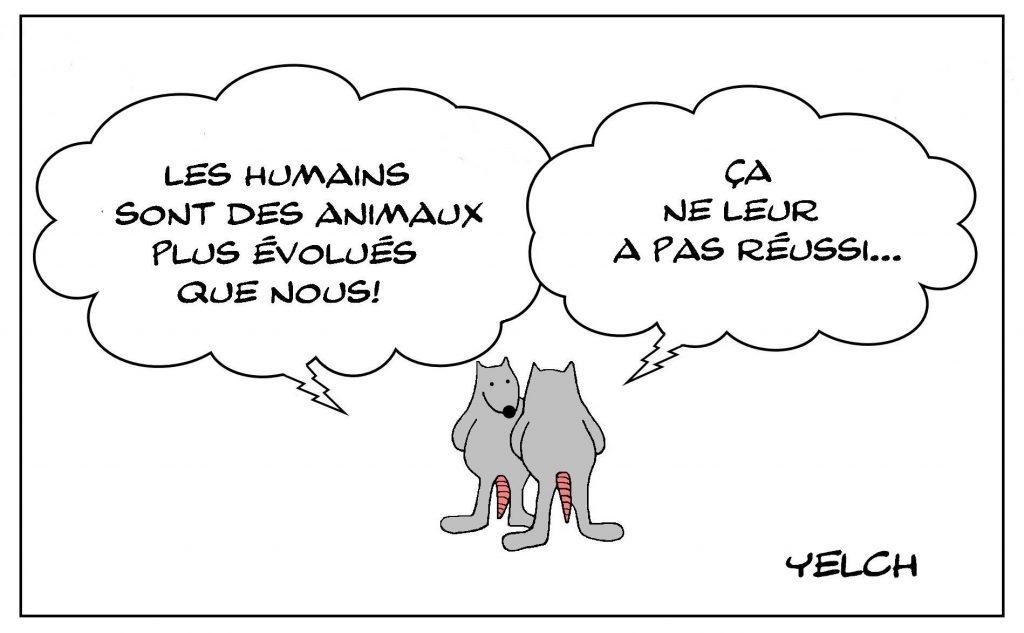 dessins humour êtres humains image drôle animaux évolués