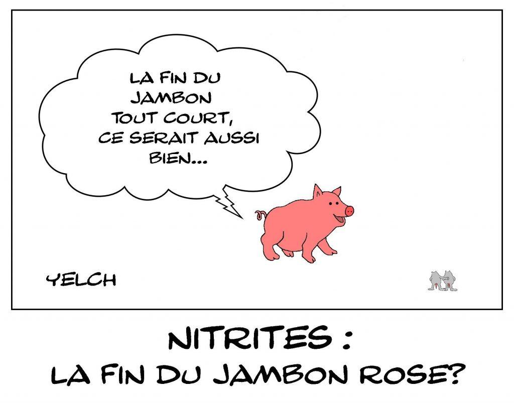 dessins humour nitrites nourriture image drôle jambon rose