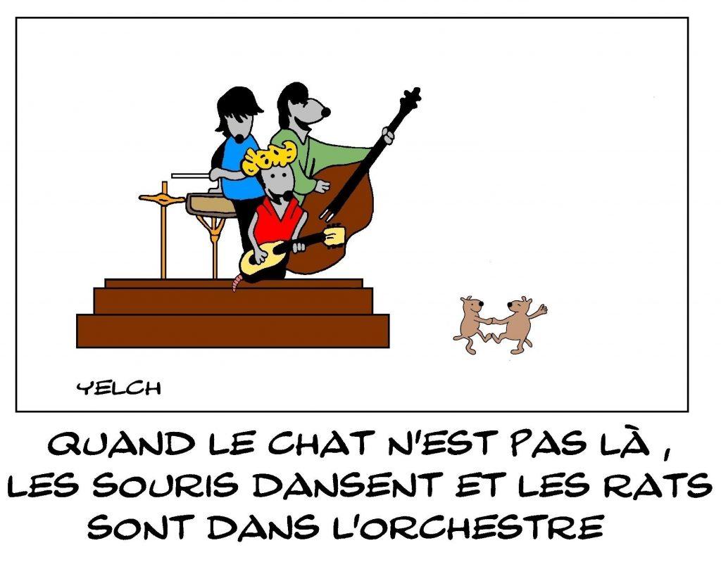 dessins humour proverbe chats image drôle souris danse