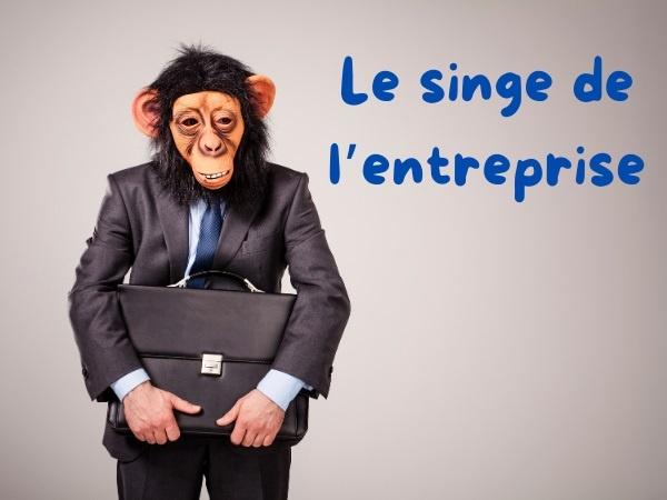 humour, entreprise, blague sur les entreprises, travail, blague sur le travail, insulte, blague sur les insultes, branche, blague sur les branches, singe, blague sur les singes, gorille, blague sur les gorilles, physique, blague sur les physiques, chimpanzé, blague sur les chimpanzés, collègue, blague sur les collègues, employé, blague sur les employés, planning, blague sur les plannings