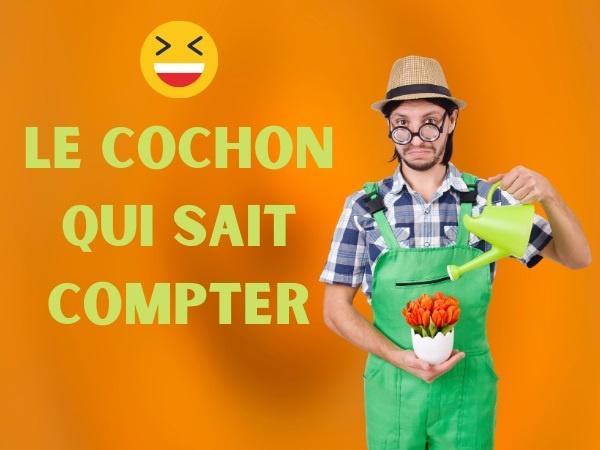 humour, blague paysans, blague fermiers, blague voisins, blague cochon, blague comptage, blague calcul, blague violence, blague coup de pied, humour cochon