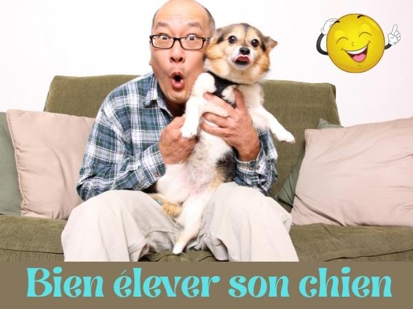 humour, blague élevage, blague dressage, blague chiens, blague animaux, blague règles, blague fauteuil, blague couvertures