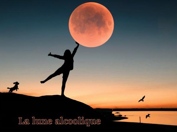humour, blague sur la lune, blague sur les ivrognes, blague sur voir double, blague sur les nombres, blague sur les rangées, blague sur l'alcoolisme