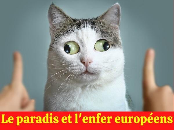humour, blague sur le Paradis, blague sur l'Enfer, blague sur les italiens, blague sur les allemands, blague sur les français, blague sur les suisses