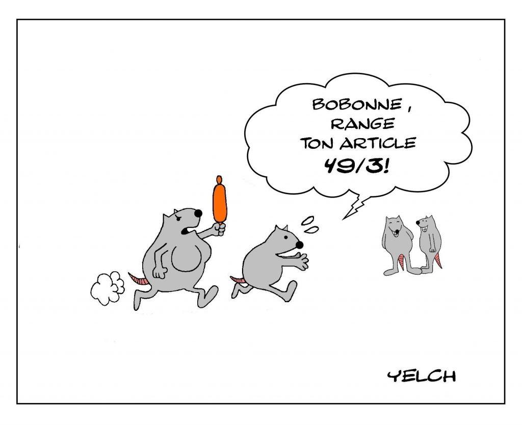 dessins humour couple ménage image drôle politique article 49.3