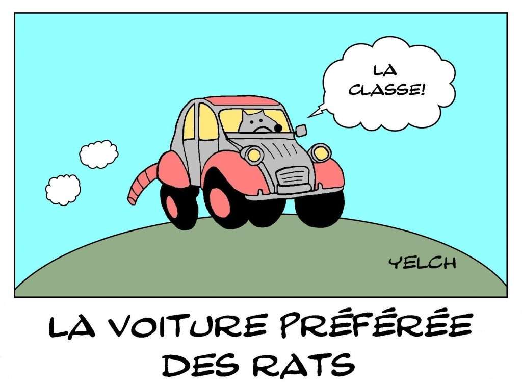 dessins humour Citroën 2CV image drôle 2 Pattes 2 chevaux deudeuches