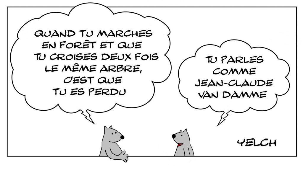 dessins humour Jean-Claude Van Damme image drôle langage promenade forêt
