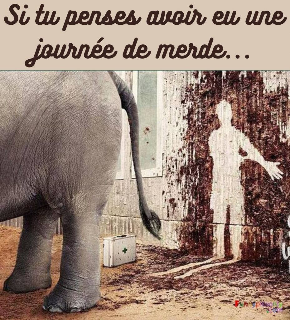 dessin humour éléphant caca image drôle diarrhée