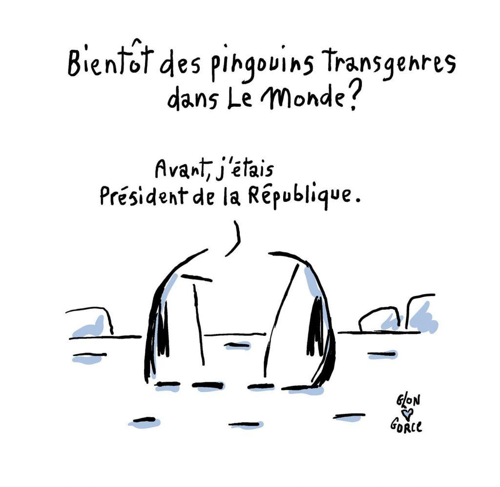 dessin presse humour Le Monde Xavier Gorce image drôle pingouin transgenre