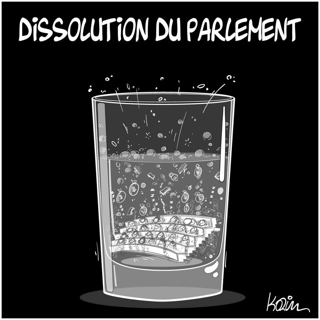 dessin presse humour Algérie image drôle dissolution parlementaire