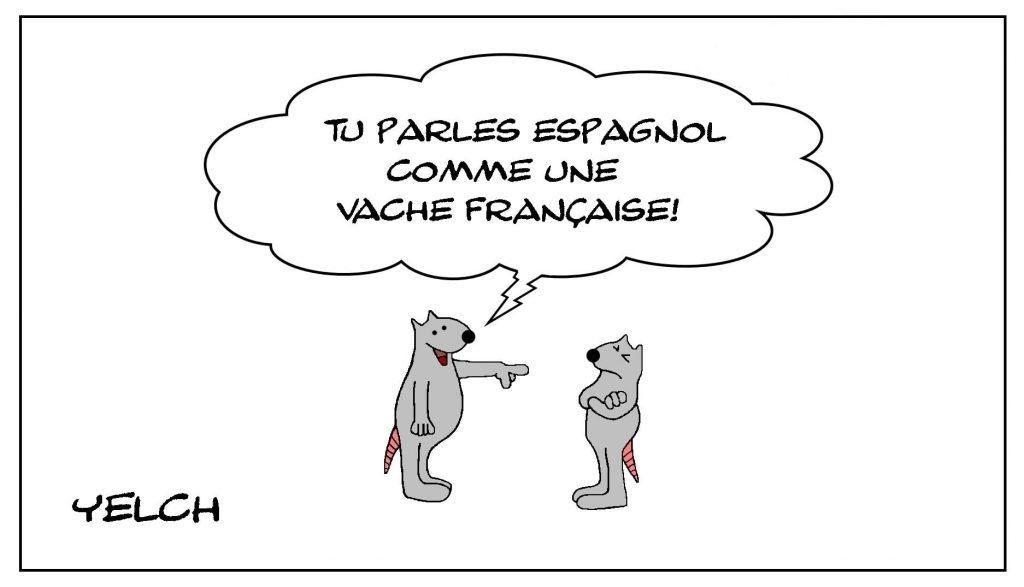 dessins humour expressions langue étrangère image drôle français espagnol