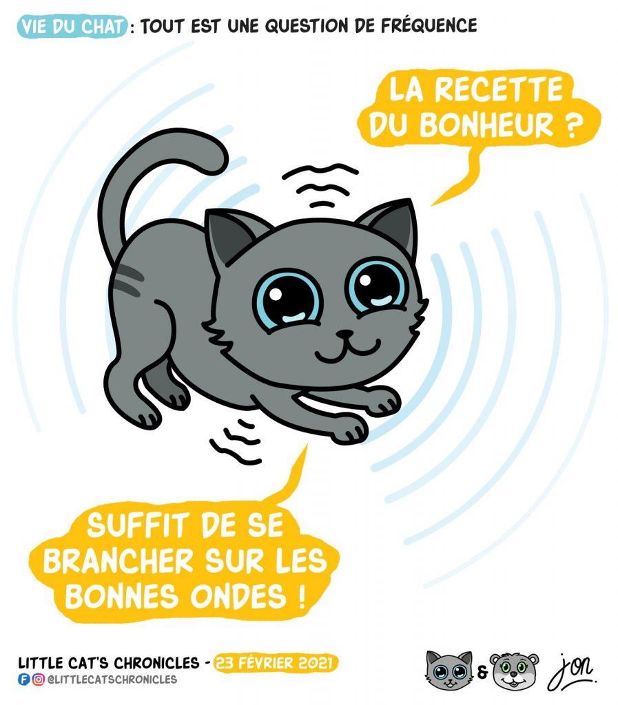 dessin humour little cat blague image drôle chat recette bonheur onde