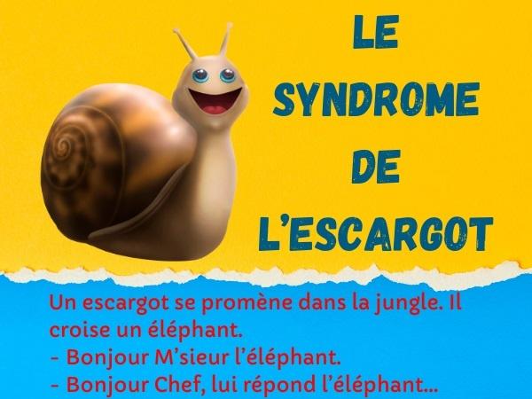 humour, blague hiérarchie, blague animaux, blague jungle, blague escargot, blague chef, blague éléphant
