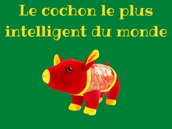 humour, blague paysan, blague cochon, blague fermier, blague porc, blague intelligence, blague sauvetage, blague pattes, blague nourriture, blague incendie, blague accident, humour campagnard