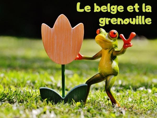 humour, blague Belge, blague grenouille, blague magie, blague princesse, blague métamorphose, blague parole