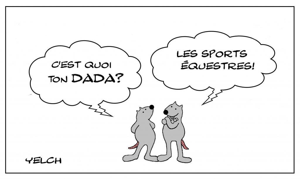 dessins humour dada cheval image drôle sports équestres