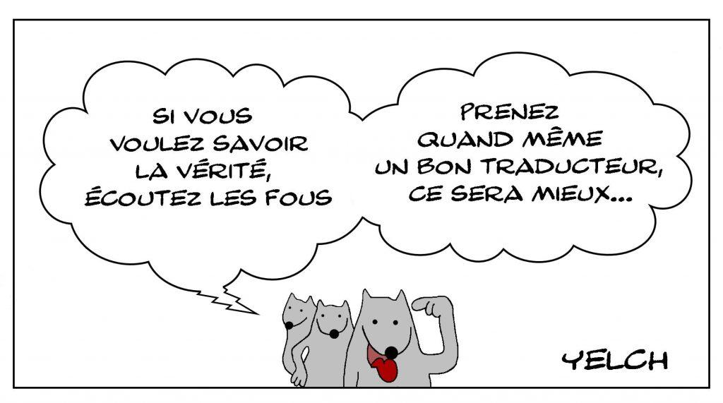 dessins humour vérité fous image drôle traduction