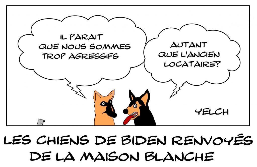 dessins humour Joe Biden chiens image drôle Maison Blanche États-Unis