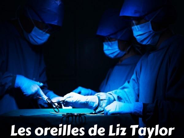 blague Liz Taylor, blague célébrités, blague chirurgie esthétique, blague chirurgiens, blague Nicky Lauda, blague vagin, humour