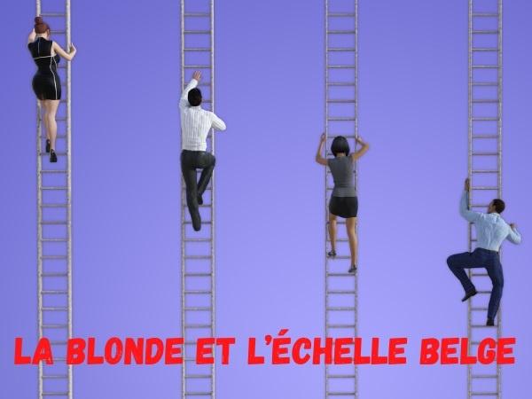 humour, blague blondes, blague belges, blague échelle, blague danger, blague avertissement, blague stop