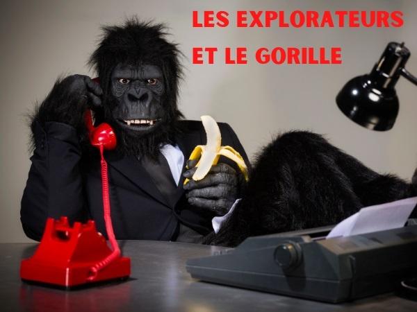 humour, blague sur les explorateurs, blague sur les gorilles, blague sur les belles-mères, blague sur les singes, blague sur les unions, blague sur les couples