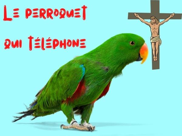 humour, blague sur les perroquets, blague sur les téléphones, blague sur les factures, blague sur Jésus-Christ, blague sur la crucifixion, blague sur l'Afrique du Sud