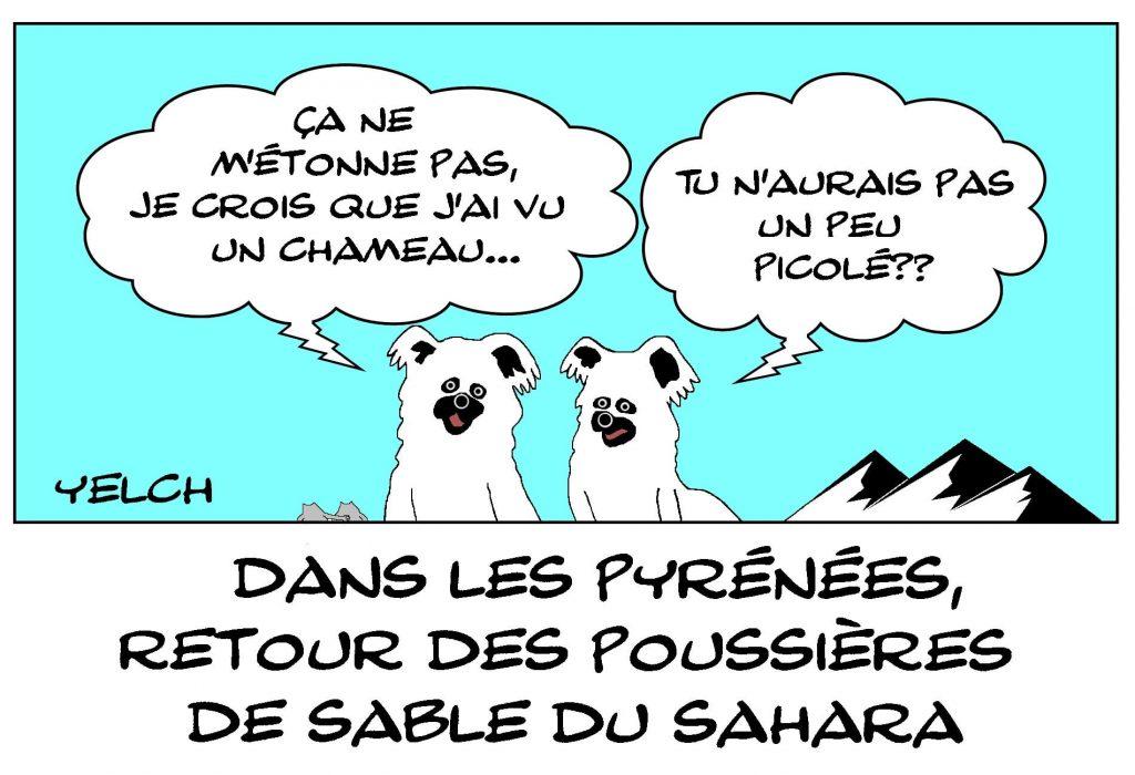 dessins humour Pyrénées vent sable image drôle Sahara