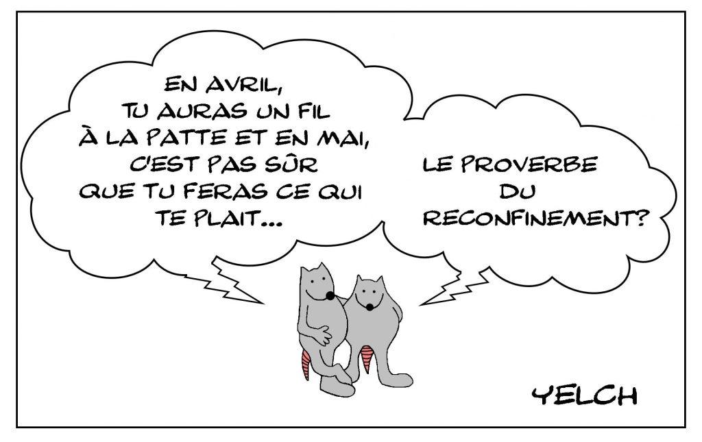 dessins humour coronavirus covid19 image drôle reconfinement proverbe confinement