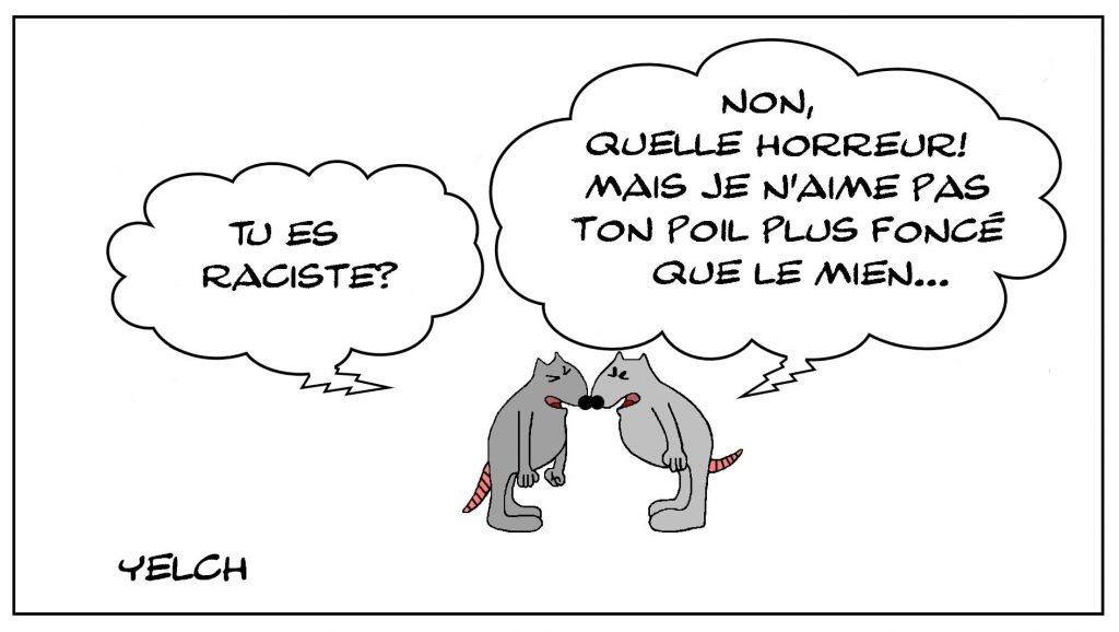 dessins humour racisme raciste image drôle rat couleur