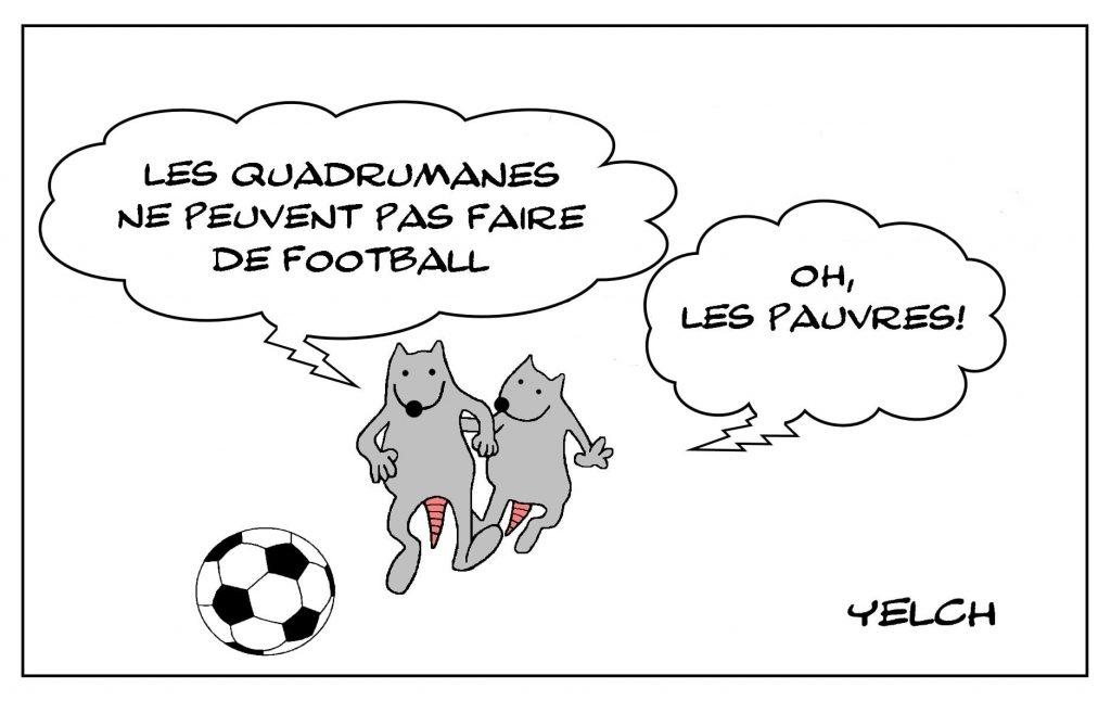 dessins humour quadrumane foot image drôle singes football mains