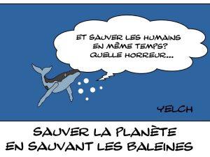 dessins humour sauver planète écologie image drôle sauver baleines