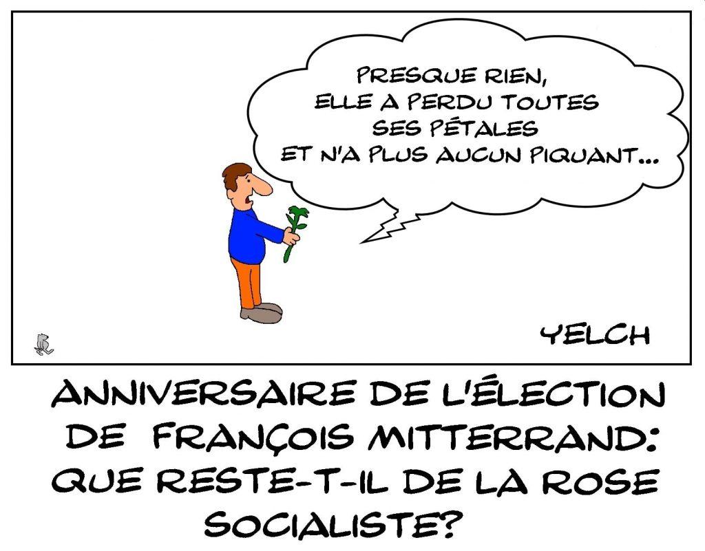 dessins humour anniversaire élection François Mitterrand image drôle rose socialiste